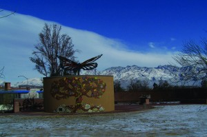 Brandi Fenton Memorial Park